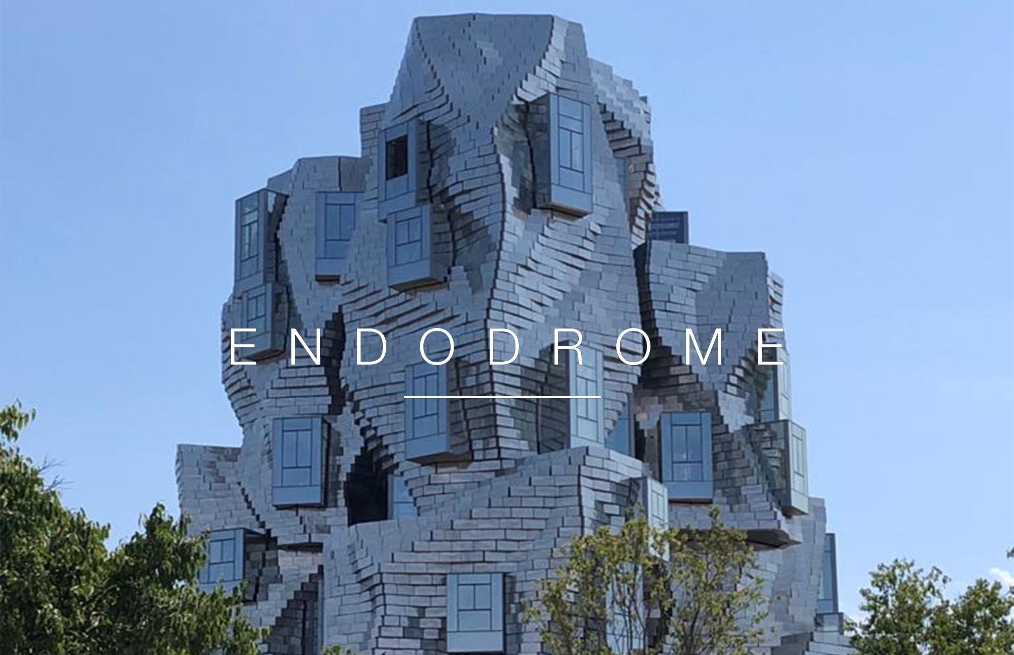 Endodrome at the LUMA Foundation in Arles